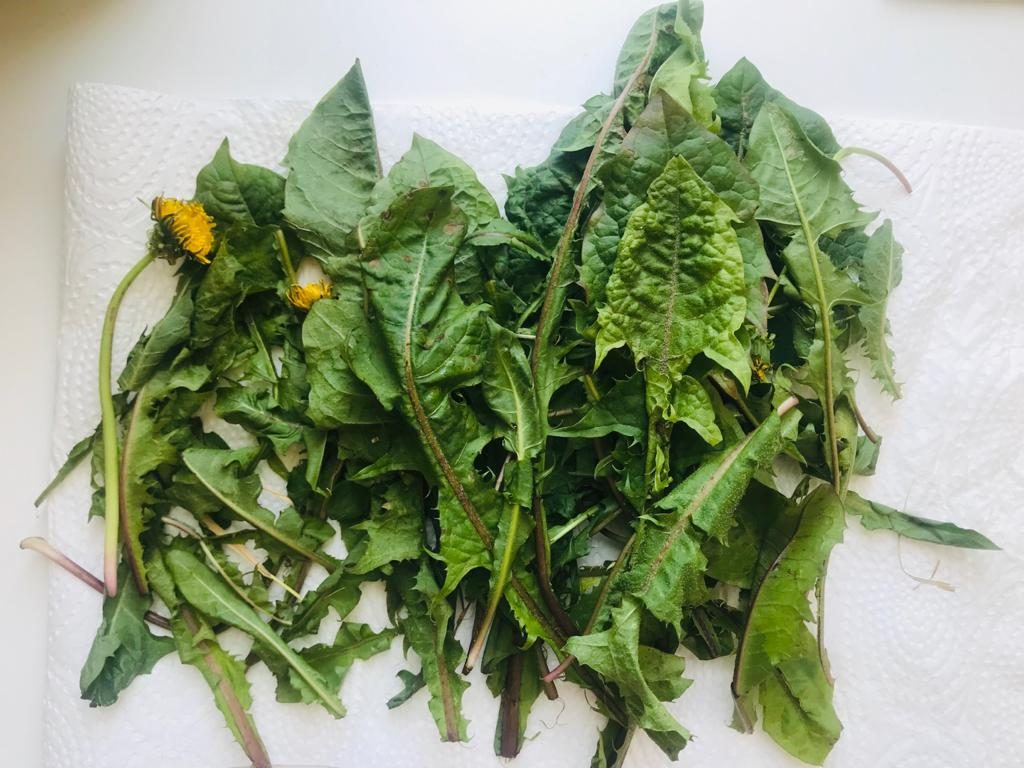 Dandelions pesto recipe by notetoiris